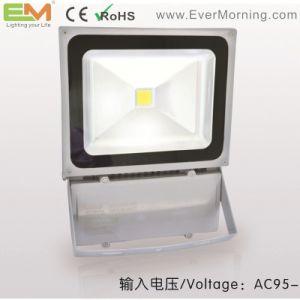 70W IP65 Waterproof CE Certified LED Floodlight