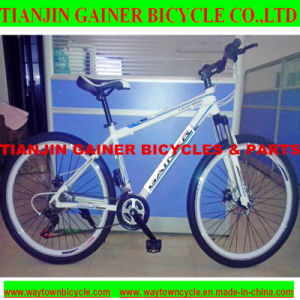 "Tianjin Gainer 26"" MTB/ Mountain Bicycle 21sp Fashionable Design pictures & photos"