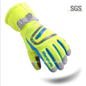 Junior Fashion Thinsulate 40gram Hand Gloves