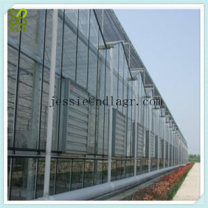 Double Layers Glass Panel Green House pictures & photos