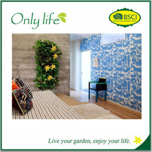 Onlylife Don′t Need Special Caring Eco-Friendly Grow Vertical Planter pictures & photos