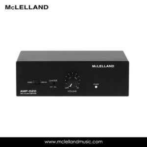 Class D Local Amplifier with 20W (AMP-D20) pictures & photos