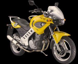 320cc EEC Sports Motorbike (HDM320E-5C)