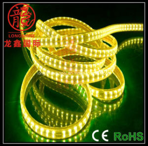 60 LED SMD5050 Seal Waterproof Strip Light pictures & photos