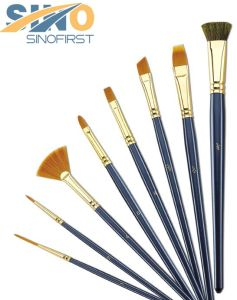 Different Shapes Different Hairs Artist Brush Set for Painting pictures & photos