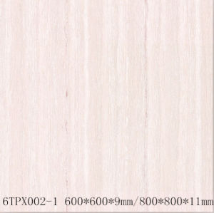 Line Stone Series Double Loading Polished Porcelain Tiles (6TPX002-1/8TPX002-1)