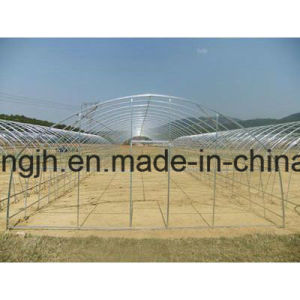 Hot Sale Quality Galvanized Steel Skeleton for Greenhouse pictures & photos