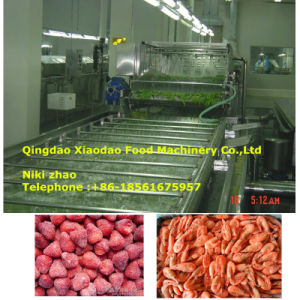 Frozen Meat Thawing Machine/Frozen Bottle Thawing Machine pictures & photos