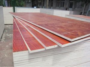 Bingtanger Commercial Plywood / Film Faced Plywood