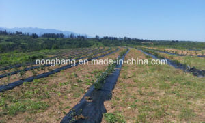 PP Woven Weed Control Mat, Ground Mat on Rolls safety Fence pictures & photos