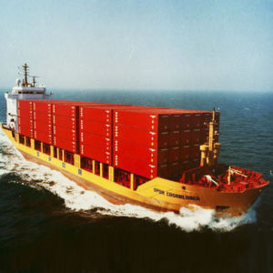 Special Container Shipping Service pictures & photos