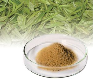 The Polyphenols in Tea Tea Polyphenol pictures & photos
