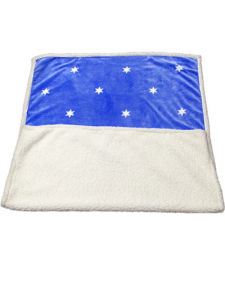 Winter Blanket Sr-B170227-16 Solid Flannel with Sherpa Backside Blanket pictures & photos