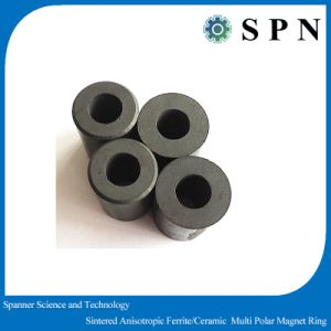 Ferrite Permanent Multipole Magnet Sintered Rings pictures & photos