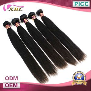 Xbl High Quality 100% Virgin Brazilian Hair Wholesale pictures & photos