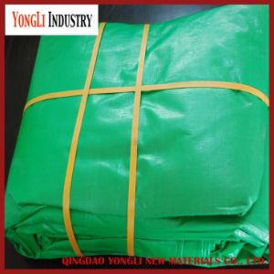 High Quality Cheap PE Tarpaulin, Korea Tarpaulin pictures & photos