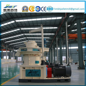 1.5t Ring Die Vertical Dobule Sizes Grass Wood Sawdust Alfalfa Bamboo Pelletizer Plant Machinery Price pictures & photos