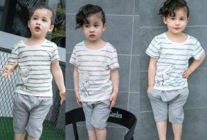 Boy Kids Wear pictures & photos