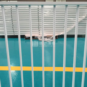 Galvanized Welded Steel Fence with Competive Price for High Decoration pictures & photos