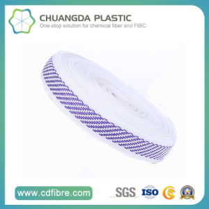 Factory Price Polypropylene Belt Tape PP Webbing pictures & photos