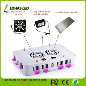 Full Spectrum Hydroponic LED Plant Grow Light with 300W-1200W pictures & photos