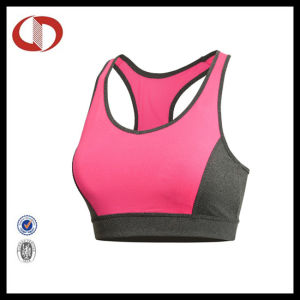 China Wholesale Sexy Women Sports Bra with Cheap Price pictures & photos