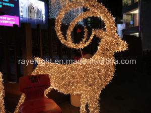 Waterproof LED Christmas LED Decoration Light Factory LED Lights pictures & photos