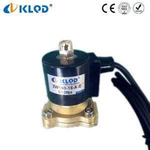 2W160-15A Waterproof Coil Direct Brass Solenoid Water Valve 220V AC pictures & photos