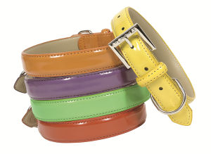 Patent Leather Pet Collar in Five Colors, Dog Collar and Leash Supply pictures & photos
