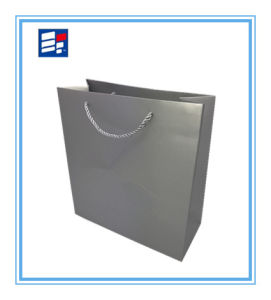 Hot Sales Customized Paper Hand Bag for Shopping and Gift pictures & photos