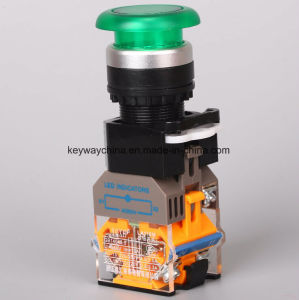 Keyway Illuminated-Mushroom Type Push Button Switch pictures & photos