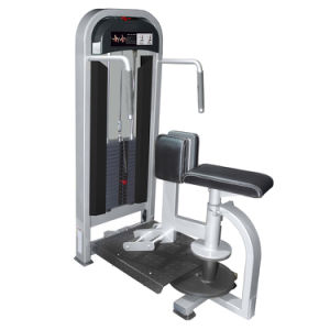 Fitness Equipment for Rotary Torso Rotation (M2-1021) pictures & photos