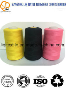 for Machine Embroidery 100% Rayon Embroidery Thread pictures & photos