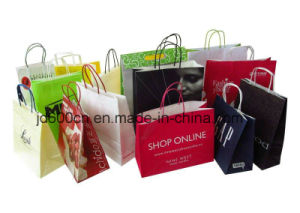 Specialty Paper Bag/Gift Bags Low Price pictures & photos