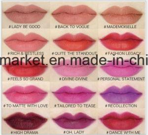 Mc Retro Matte Liquid Lipsticks 15 Color Cosmetic Matte Lipgloss pictures & photos