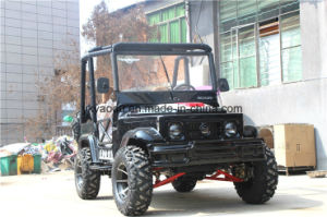Chain Drive Electric Sports ATV China Supply pictures & photos