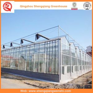 Agriculture Multi Span Glass Greenhouse for Vegetables/Garden pictures & photos