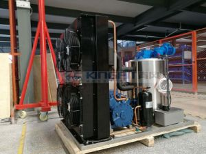 3ton Flake Ice Machine for Fishing pictures & photos