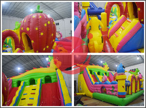 Cheap Inflatable Jumper Bouncers Playground for Sale (T6-404) pictures & photos
