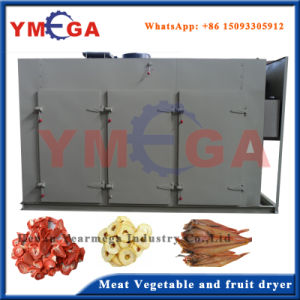 Temperature Adjustable Hot Air Gas and Electric Dehydrating Dryer pictures & photos