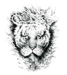 Fashionable 3D Lion Waterproof Tattoo Sticker Art Tattoo Sticker pictures & photos