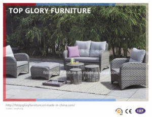 PE Rattan & Aluminum Furniture, Outdoor Rattan Sofa (TG-074) pictures & photos
