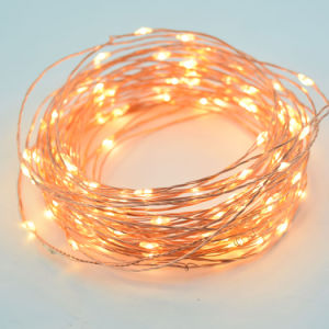Dimmable Copper String Lights Remote Control Waterproof Warm White String Light pictures & photos