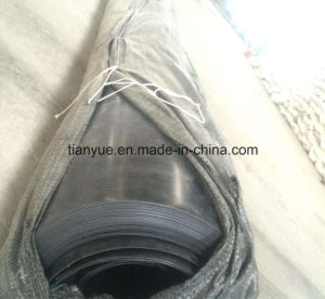 Anti-Aging Acupuncture Composite Geomembrane (PVC, PE) pictures & photos