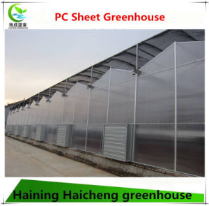 PC Sheet Greenhouse for Hydroponics System pictures & photos