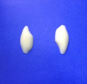 Medical Silicone Temporal Bone Implant pictures & photos
