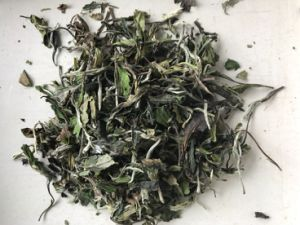 White Peony Tea Leaf 6900 with EU and Us Regulation pictures & photos