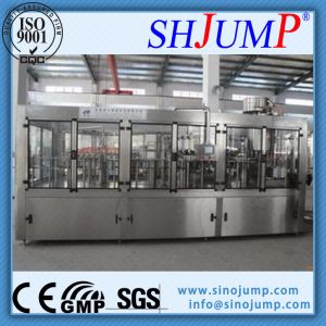 Popular Lychee/Litchi Drink Manufacturing Machines at Good Price pictures & photos
