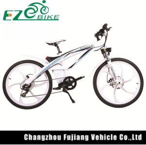 Stylish Powerful Mountain Electric Bike Tde01 pictures & photos