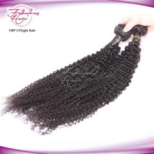 Nice Kinky Brazilian Hair Dyeable Virgin Human Hair pictures & photos